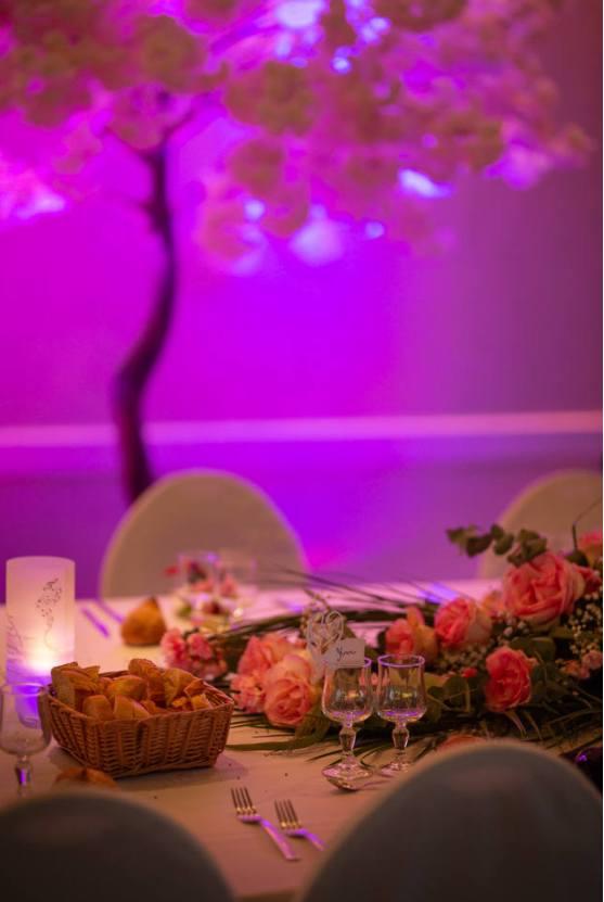mariage-messimy-pierrick-laurine-201920190917-090341